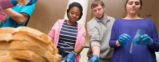 KSU Center Provides Resources for Homeless, Food Insecure, and Foster Care Students
